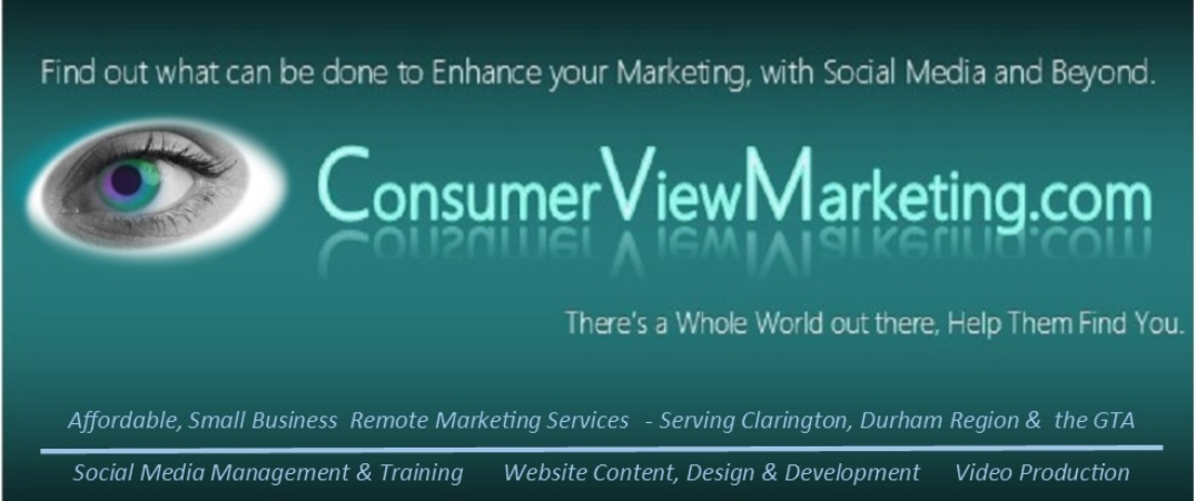 ConsumerView Remote Marketing Services